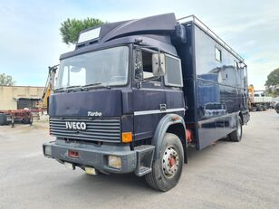شاحنة نقل الخيول IVECO 175.24